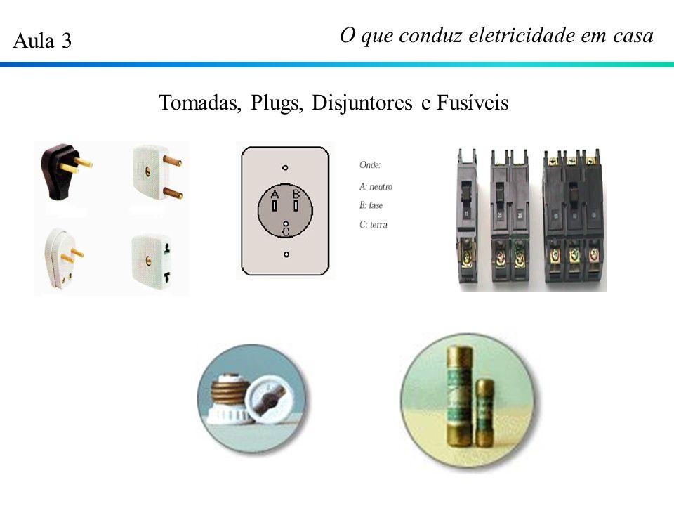 Aula 3 Tomadas, Plugs, Disjuntores e Fusíveis O que conduz eletricidade em casa