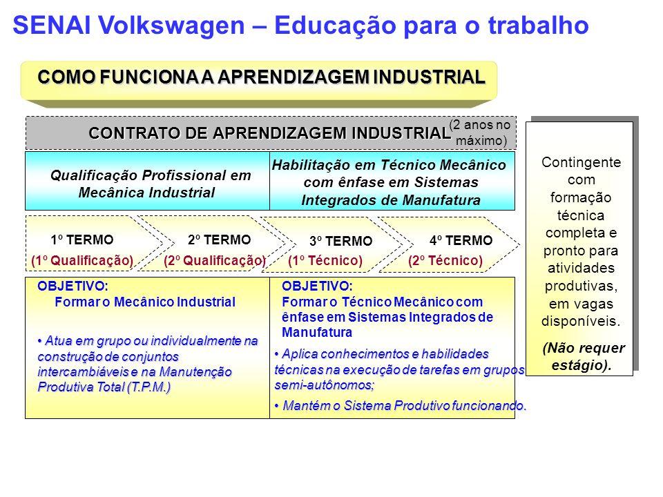 COMO FUNCIONA A APRENDIZAGEM INDUSTRIAL CONTRATO DE APRENDIZAGEM INDUSTRIAL (2 anos no máximo) Qualificação Profissional em Mecânica Industrial Habili