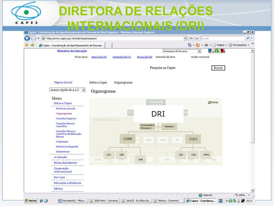 DIRETORA DE RELAÇÕES INTERNACIONAIS (DRI)