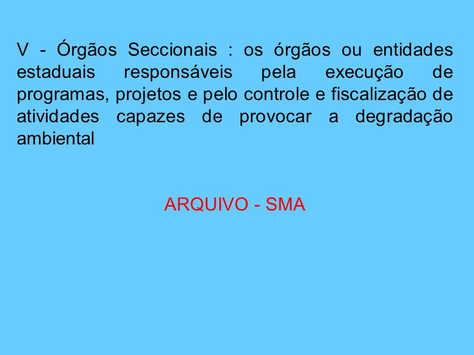 V - Órgãos Seccionais : os órgãos ou entidades estaduais responsáveis pela execução de programas, projetos e pelo controle e fiscalização de atividade