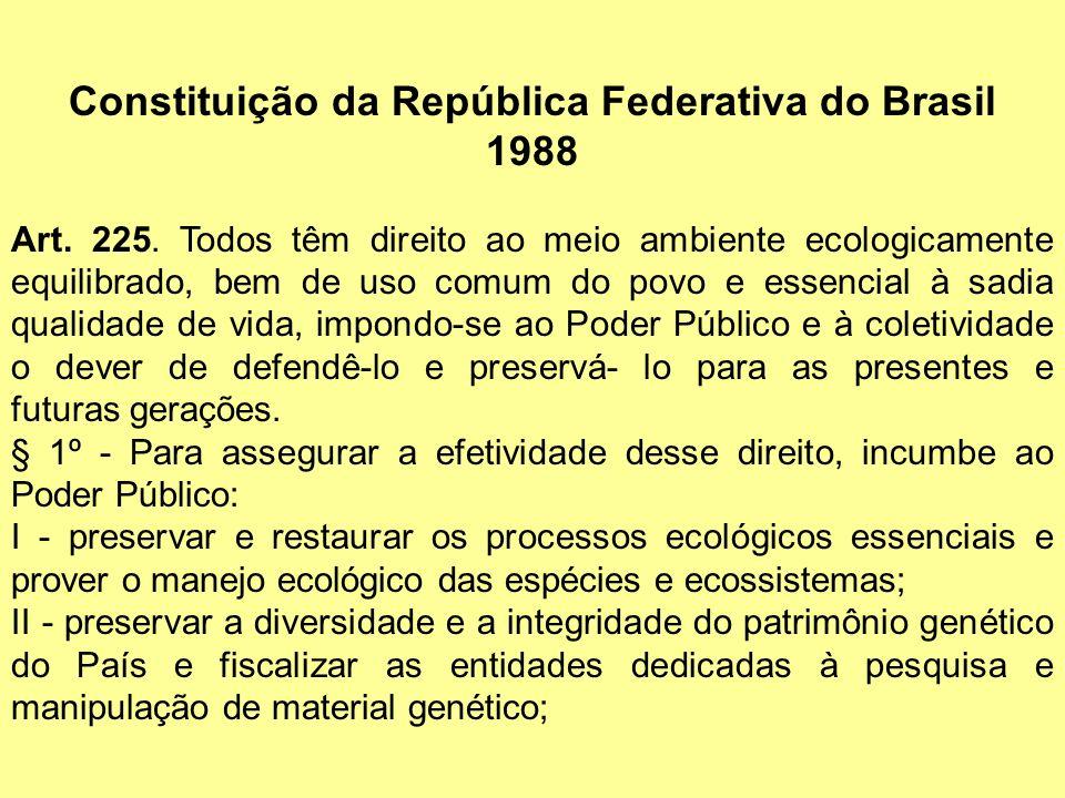 Constituição da República Federativa do Brasil 1988 Art. 225. Todos têm direito ao meio ambiente ecologicamente equilibrado, bem de uso comum do povo