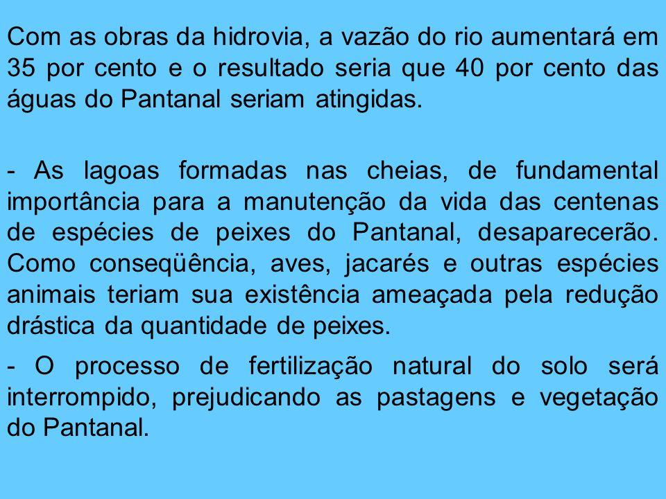 Com as obras da hidrovia, a vazão do rio aumentará em 35 por cento e o resultado seria que 40 por cento das águas do Pantanal seriam atingidas. - As l