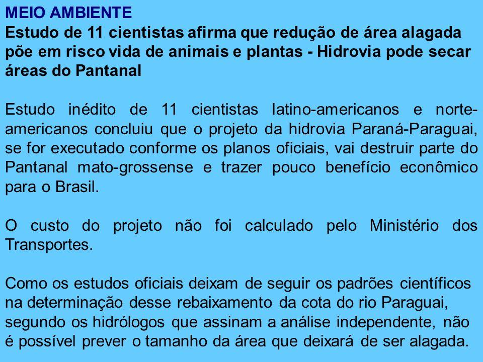 MEIO AMBIENTE Estudo de 11 cientistas afirma que redução de área alagada põe em risco vida de animais e plantas - Hidrovia pode secar áreas do Pantana