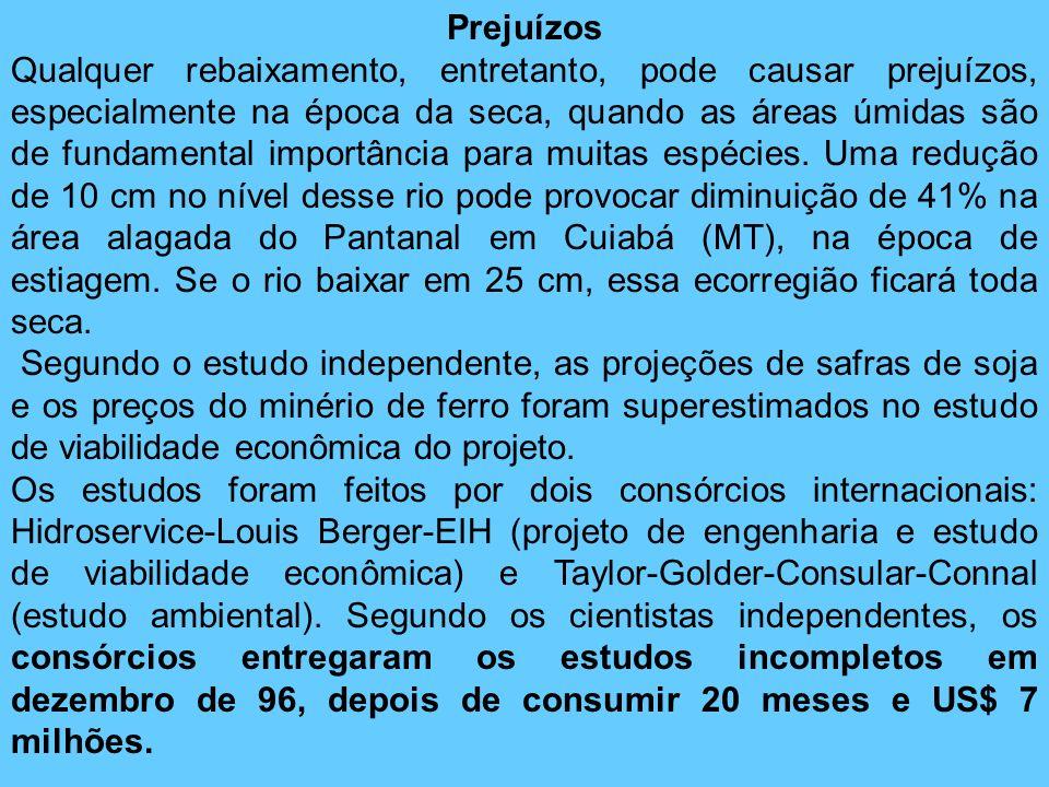 Prejuízos Qualquer rebaixamento, entretanto, pode causar prejuízos, especialmente na época da seca, quando as áreas úmidas são de fundamental importân