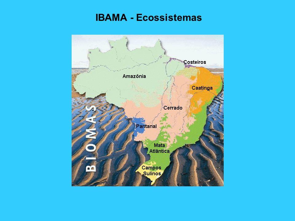 IBAMA - FAUNA Animais Silvestres Animais Domésticos Cobras, Aranhas e Escorpiões Criadouros de Crocodilo e Javali Centros de Triagem – Devolução de Animais a Natureza Criadores Amadorista de Pássaros Denúncias Espécies da Nossa Fauna Estratégias para Conservação da Fauna Jardins Zoológicos Legislação Lista Oficial de Animais Ameaçados de Extinção Licença para Coleta de Material Biológico Manejo Faunístico Sistema de Marcação dos Produtos da Fauna Transporte Legal de Animais Utilização Racional dos Recursos Faunísticos