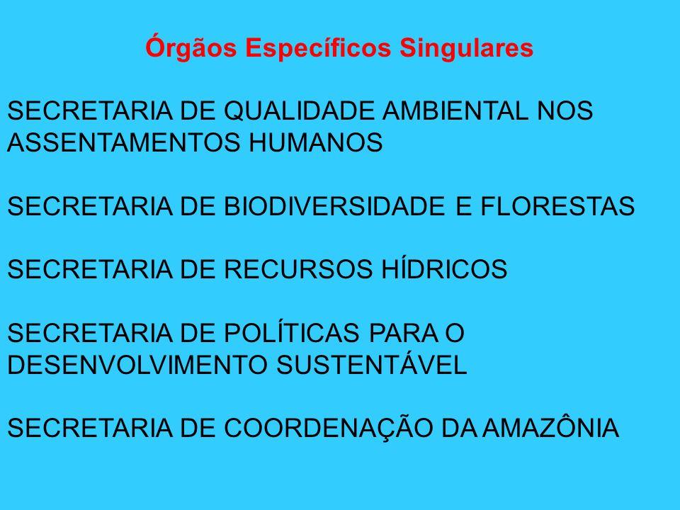 Órgãos Específicos Singulares SECRETARIA DE QUALIDADE AMBIENTAL NOS ASSENTAMENTOS HUMANOS SECRETARIA DE BIODIVERSIDADE E FLORESTAS SECRETARIA DE RECUR