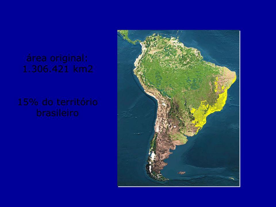 área original: 1.306.421 km2 15% do território brasileiro