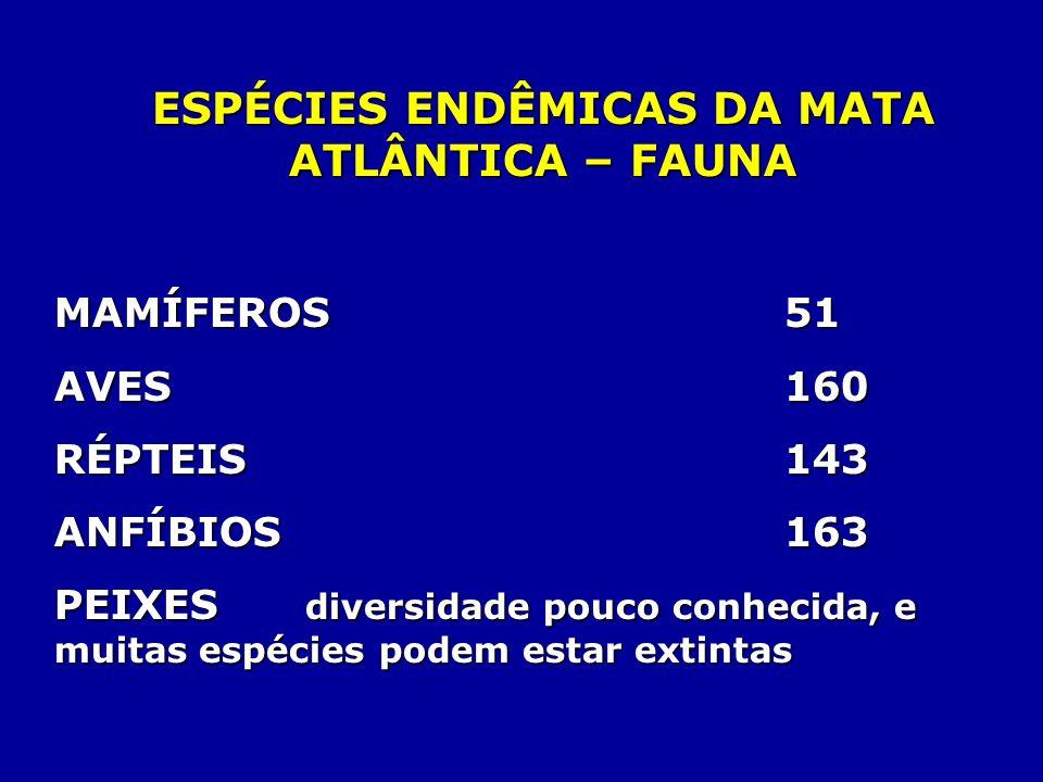 ESPÉCIES ENDÊMICAS DA MATA ATLÂNTICA – FAUNA MAMÍFEROS51 MAMÍFEROS 51 AVES 160 RÉPTEIS 143 ANFÍBIOS 163 PEIXES diversidade pouco conhecida, e muitas e