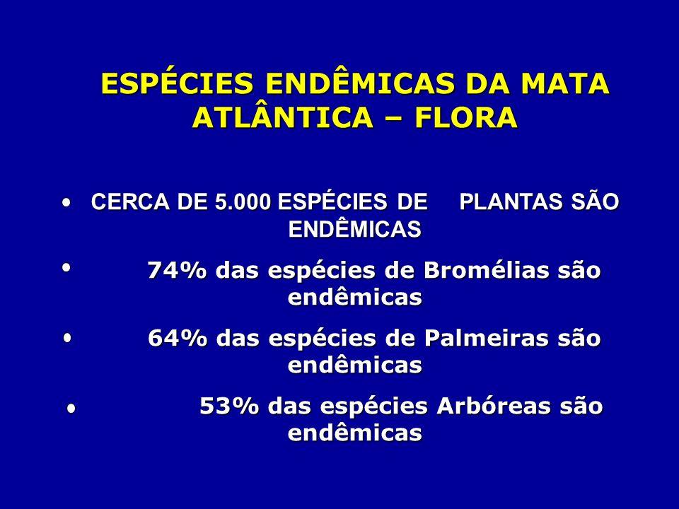ESPÉCIES ENDÊMICAS DA MATA ATLÂNTICA – FLORA CERCA DE 5.000 ESPÉCIES DE PLANTAS SÃO ENDÊMICAS 74% das espécies de Bromélias são endêmicas 74% das espé
