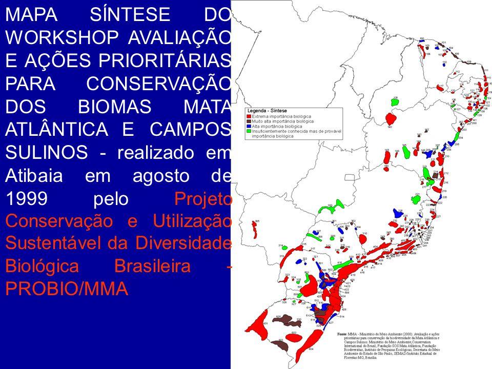 MAPA SÍNTESE DO WORKSHOP AVALIAÇÃO E AÇÕES PRIORITÁRIAS PARA CONSERVAÇÃO DOS BIOMAS MATA ATLÂNTICA E CAMPOS SULINOS - realizado em Atibaia em agosto d