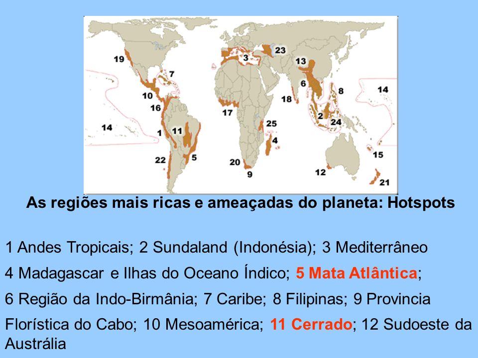 As regiões mais ricas e ameaçadas do planeta: Hotspots 1 Andes Tropicais; 2 Sundaland (Indonésia); 3 Mediterrâneo 4 Madagascar e Ilhas do Oceano Índic