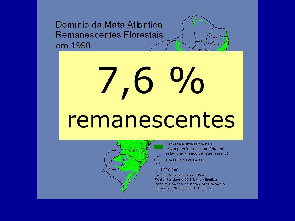 7,6 % remanescentes