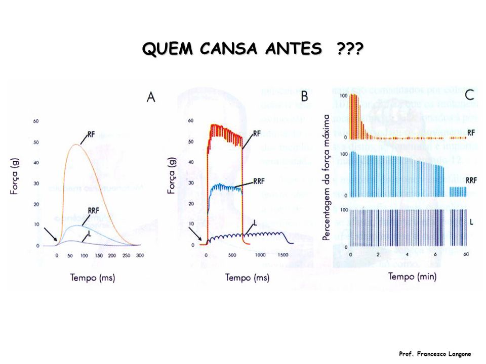 QUEM CANSA ANTES ??? Prof. Francesco Langone