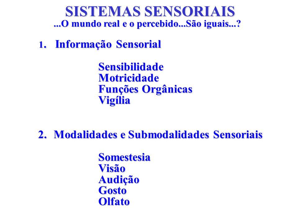 SISTEMAS SENSORIAIS...O mundo real e o percebido...São iguais...? 1. Informação Sensorial SensibilidadeMotricidade Funções Orgânicas Vigília 2.Modalid
