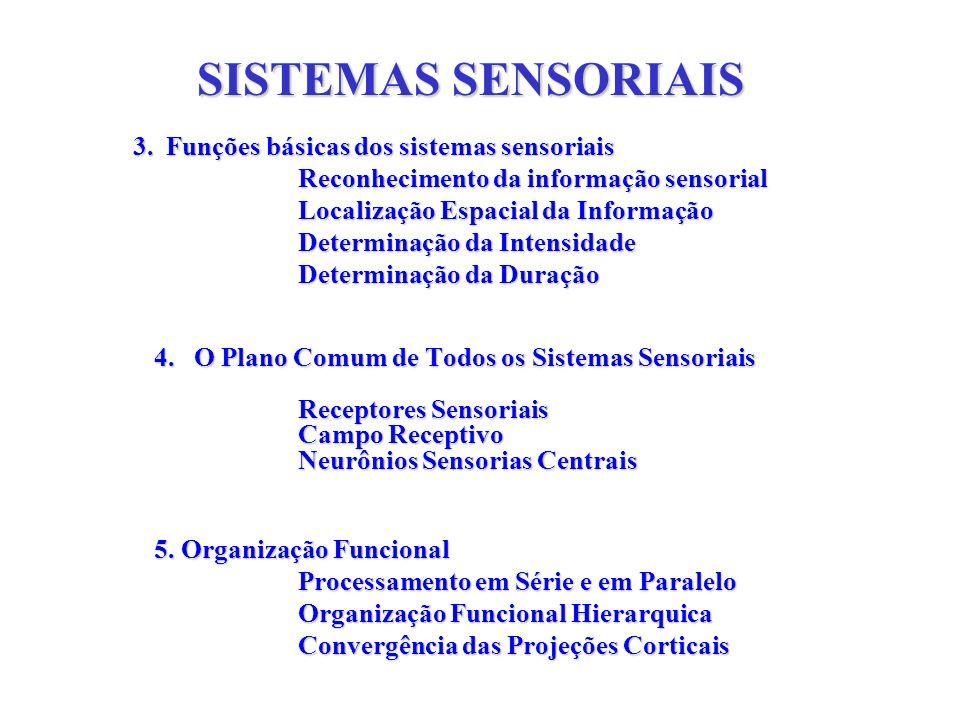 SISTEMAS SENSORIAIS 3. Funções básicas dos sistemas sensoriais 3. Funções básicas dos sistemas sensoriais Reconhecimento da informação sensorial Local