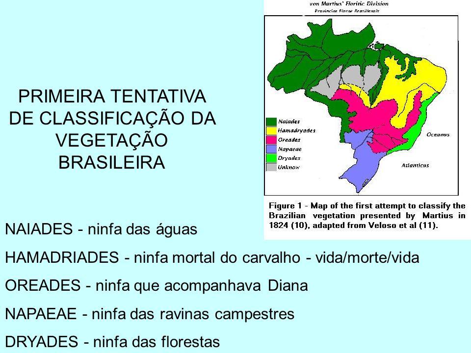 NAIADES - ninfa das águas HAMADRIADES - ninfa mortal do carvalho - vida/morte/vida OREADES - ninfa que acompanhava Diana NAPAEAE - ninfa das ravinas c