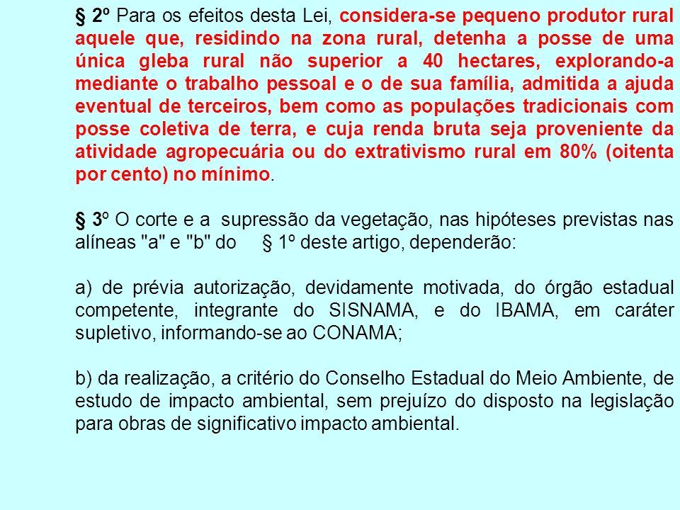 § 2º Para os efeitos desta Lei, considera-se pequeno produtor rural aquele que, residindo na zona rural, detenha a posse de uma única gleba rural não