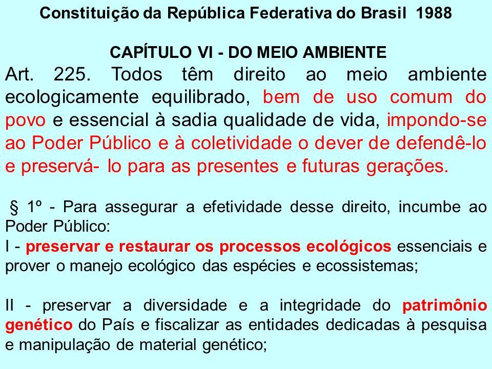 Constituição da República Federativa do Brasil 1988 CAPÍTULO VI - DO MEIO AMBIENTE Art. 225. Todos têm direito ao meio ambiente ecologicamente equilib