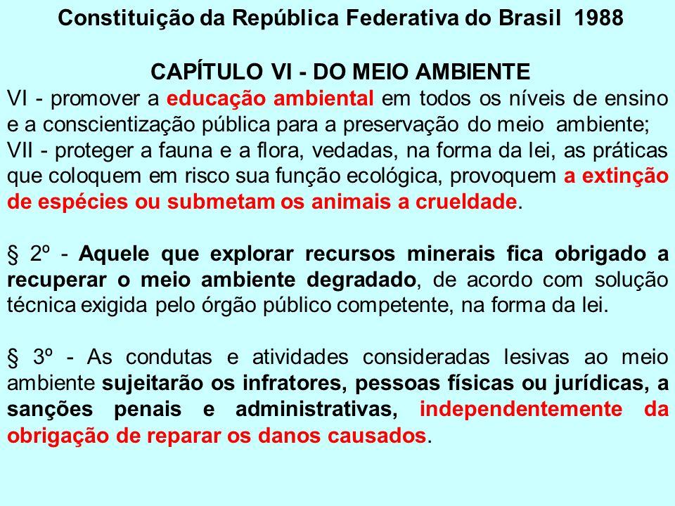 Constituição da República Federativa do Brasil 1988 CAPÍTULO VI - DO MEIO AMBIENTE VI - promover a educação ambiental em todos os níveis de ensino e a