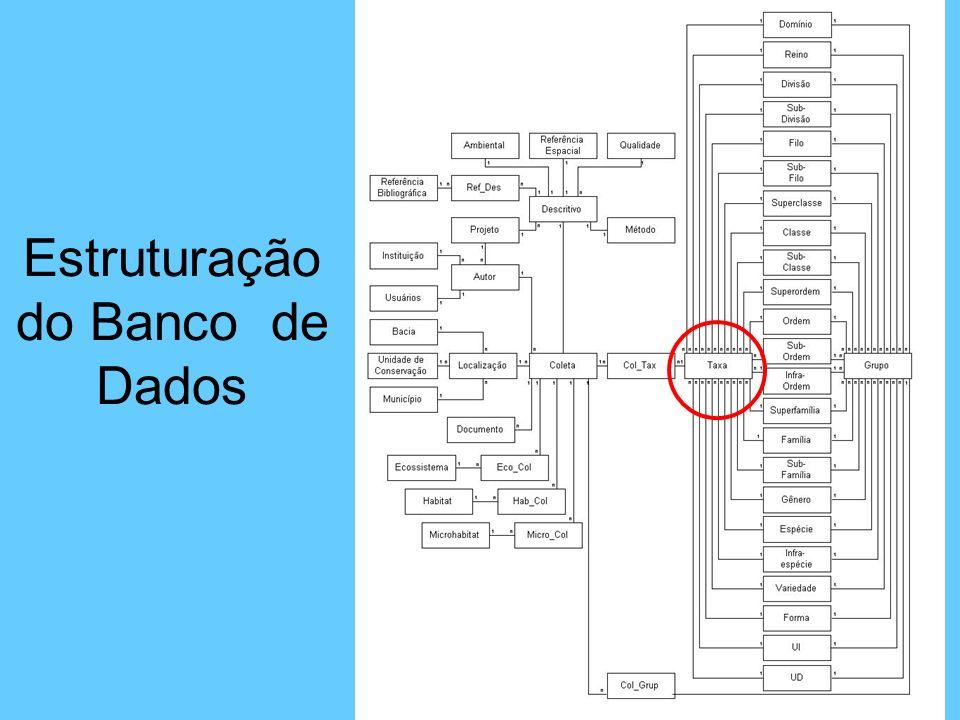 FORMATAÇÃO DAS LISTAS DE ESPÉCIES ASSOCIADAS ÀS FICHAS DE COLETA