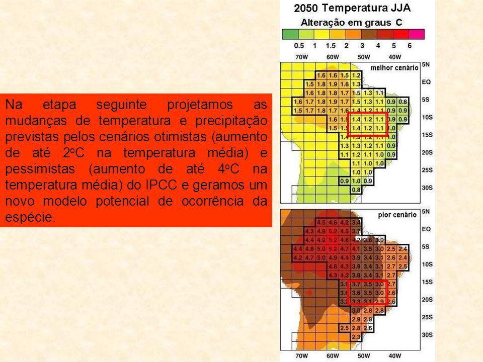Na etapa seguinte projetamos as mudanças de temperatura e precipitação previstas pelos cenários otimistas (aumento de até 2 o C na temperatura média) e pessimistas (aumento de até 4 o C na temperatura média) do IPCC e geramos um novo modelo potencial de ocorrência da espécie.
