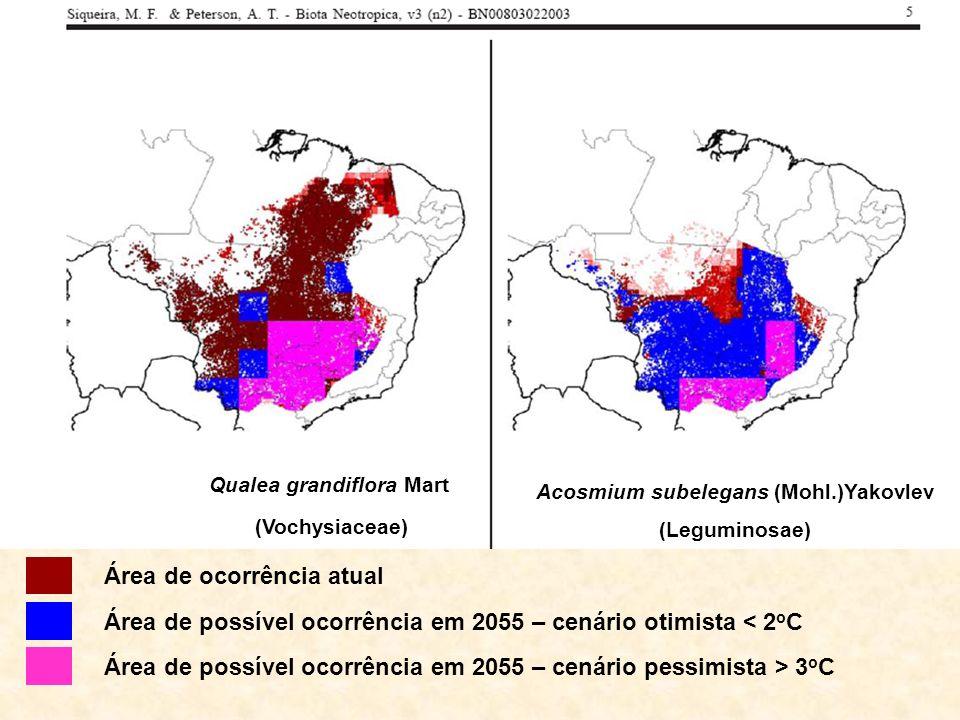 Qualea grandiflora Mart (Vochysiaceae) Acosmium subelegans (Mohl.)Yakovlev (Leguminosae) Área de ocorrência atual Área de possível ocorrência em 2055 – cenário otimista < 2 o C Área de possível ocorrência em 2055 – cenário pessimista > 3 o C