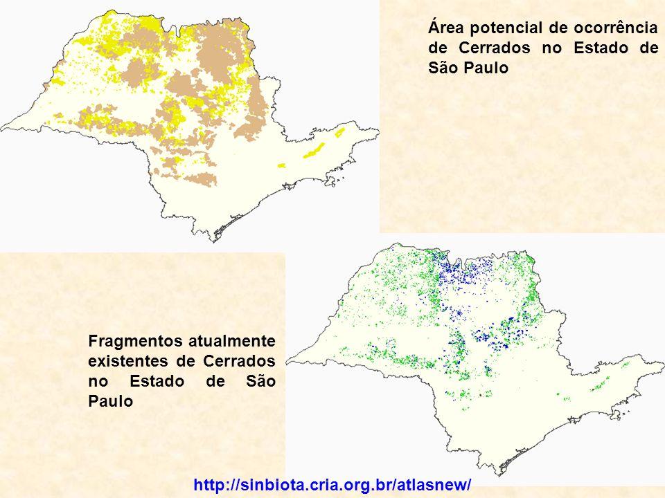 Área potencial de ocorrência de Cerrados no Estado de São Paulo Fragmentos atualmente existentes de Cerrados no Estado de São Paulo http://sinbiota.cria.org.br/atlasnew/