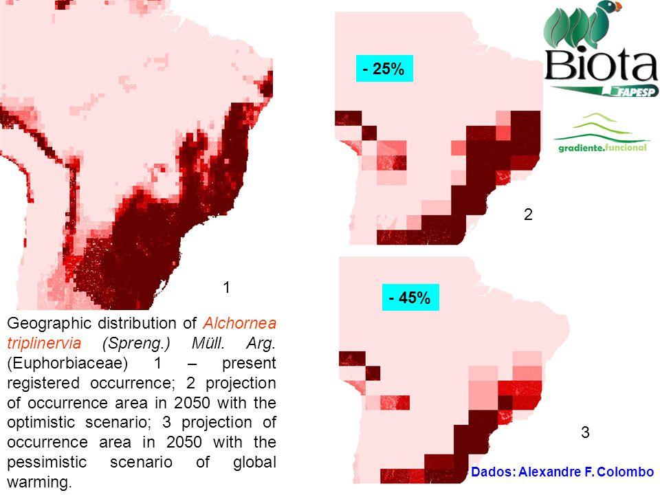 Geographic distribution of Alchornea triplinervia (Spreng.) Müll.