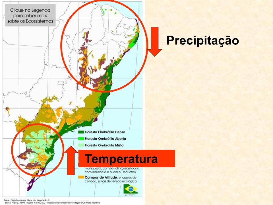 Precipitação Temperatura