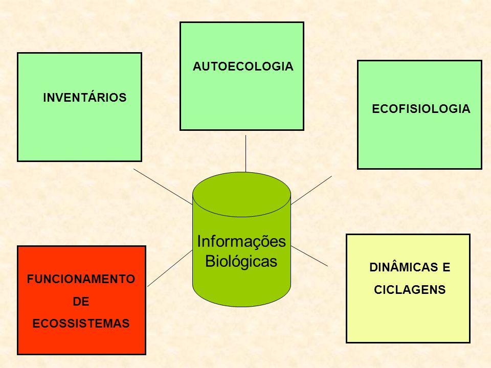 Informações Biológicas INVENTÁRIOS AUTOECOLOGIA FUNCIONAMENTO DE ECOSSISTEMAS ECOFISIOLOGIA DINÂMICAS E CICLAGENS