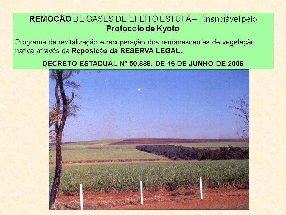 REMOÇÃO DE GASES DE EFEITO ESTUFA – Financiável pelo Protocolo de Kyoto Programa de revitalização e recuperação dos remanescentes de vegetação nativa através da Reposição da RESERVA LEGAL.