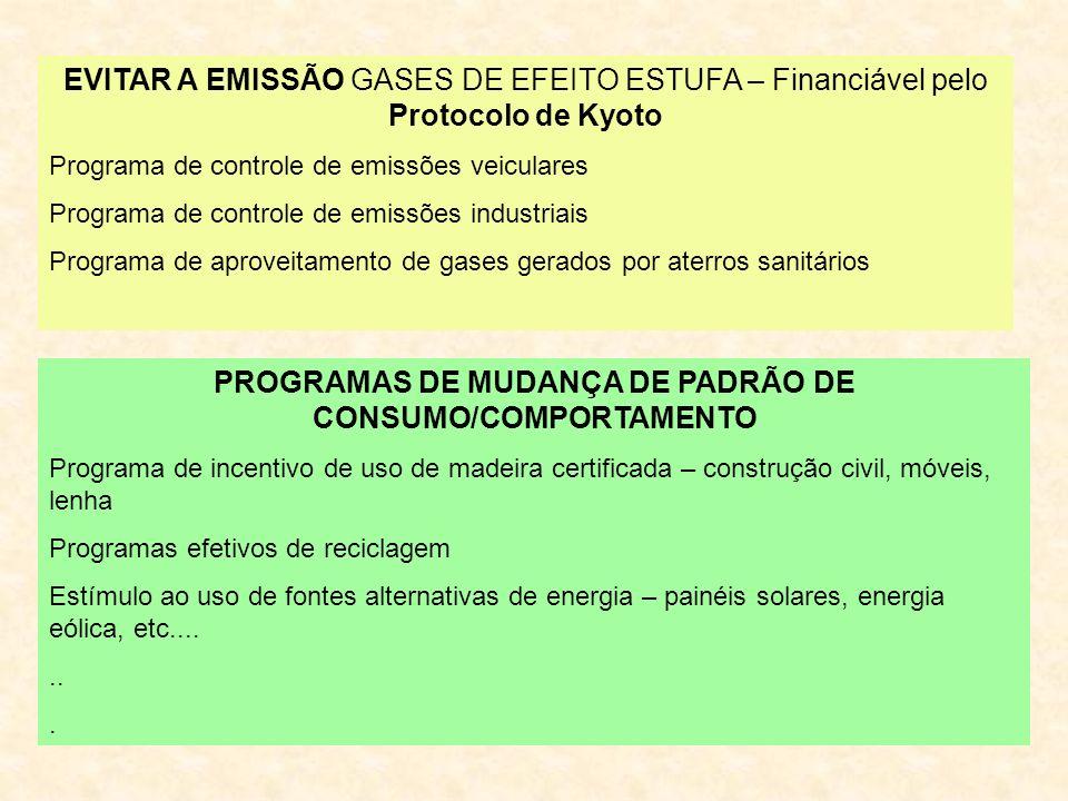 EVITAR A EMISSÃO GASES DE EFEITO ESTUFA – Financiável pelo Protocolo de Kyoto Programa de controle de emissões veiculares Programa de controle de emissões industriais Programa de aproveitamento de gases gerados por aterros sanitários PROGRAMAS DE MUDANÇA DE PADRÃO DE CONSUMO/COMPORTAMENTO Programa de incentivo de uso de madeira certificada – construção civil, móveis, lenha Programas efetivos de reciclagem Estímulo ao uso de fontes alternativas de energia – painéis solares, energia eólica, etc.......