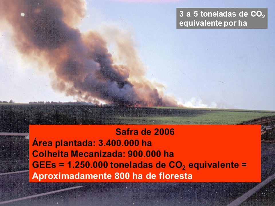 3 a 5 toneladas de CO 2 equivalente por ha Safra de 2006 Área plantada: 3.400.000 ha Colheita Mecanizada: 900.000 ha GEEs = 1.250.000 toneladas de CO 2 equivalente = Aproximadamente 800 ha de floresta