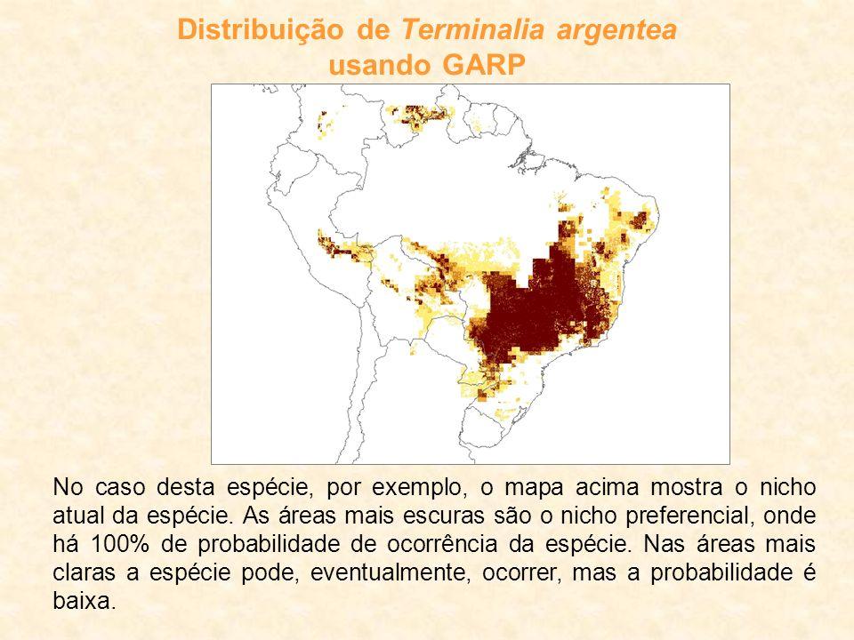 Distribuição de Terminalia argentea usando GARP No caso desta espécie, por exemplo, o mapa acima mostra o nicho atual da espécie.