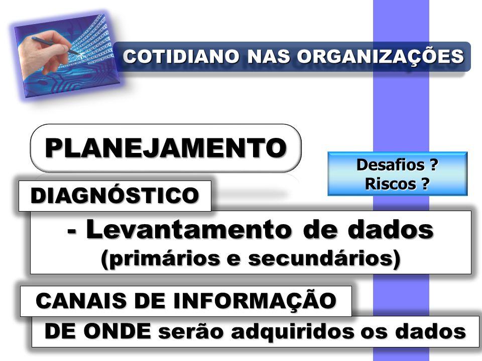 COTIDIANO NAS ORGANIZAÇÕES - Levantamento de dados (primários e secundários) DIAGNÓSTICO DE ONDE serão adquiridos os dados CANAIS DE INFORMAÇÃO Desafios .