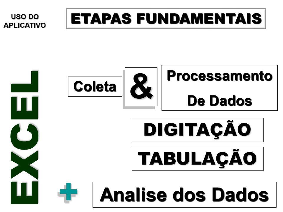 Coleta Processamento De Dados DIGITAÇÃO && TABULAÇÃO Analise dos Dados ++ ETAPAS FUNDAMENTAIS EXCEL USO DO APLICATIVO
