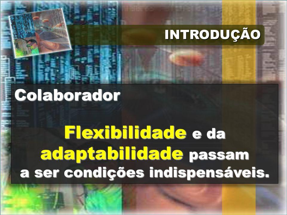 INTRODUÇÃOINTRODUÇÃO Colaborador Flexibilidade e da adaptabilidade passam a ser condições indispensáveis.
