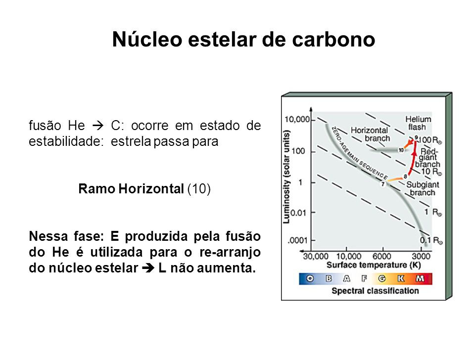 Núcleo estelar de carbono fusão He C: ocorre em estado de estabilidade: estrela passa para Ramo Horizontal (10) Nessa fase: E produzida pela fusão do