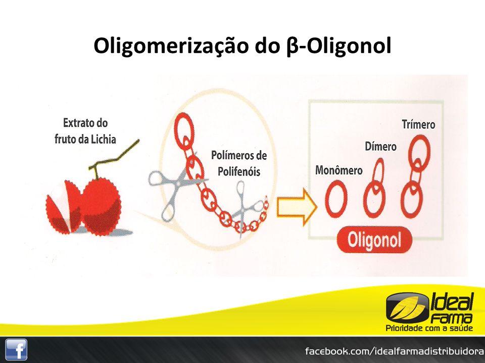 Oligomerização do β-Oligonol