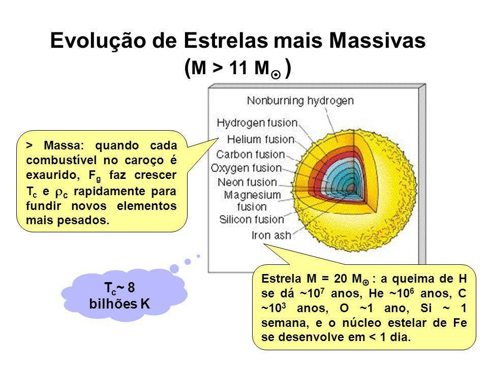 Evolução de Estrelas mais Massivas ( M > 11 M ) Estrela M = 20 M : a queima de H se dá ~10 7 anos, He ~10 6 anos, C ~10 3 anos, O ~1 ano, Si ~ 1 seman