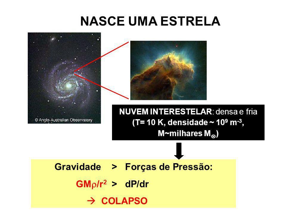 NASCE UMA ESTRELA NUVEM INTERESTELAR: densa e fria (T= 10 K, densidade ~ 10 9 m -3, M~milhares M ) Gravidade > Forças de Pressão: GM /r 2 > dP/dr COLA