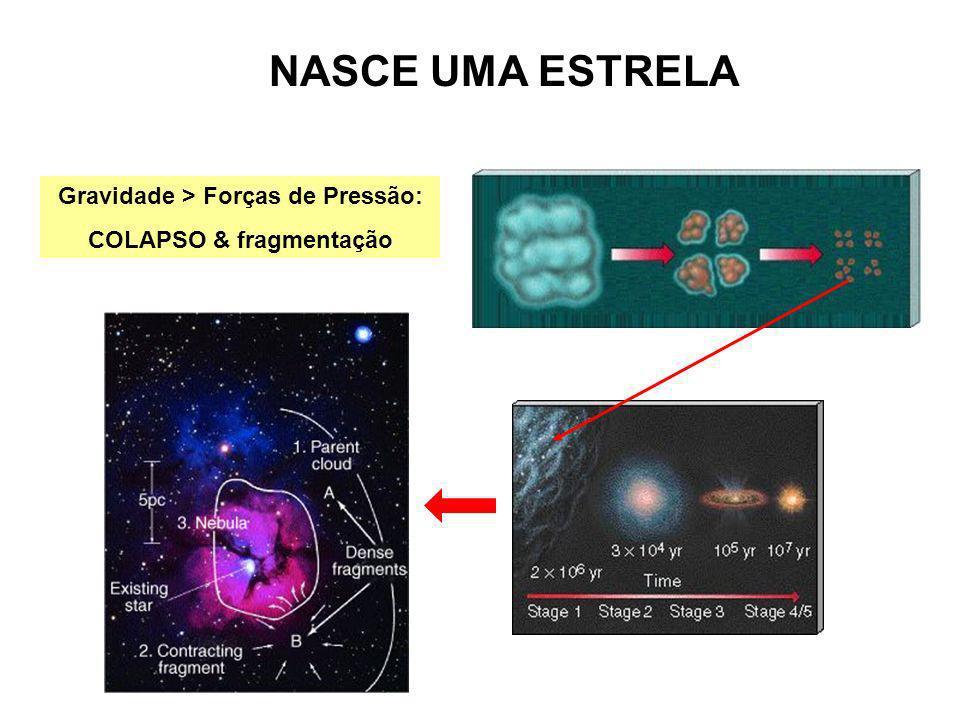 NASCE UMA ESTRELA Gravidade > Forças de Pressão: COLAPSO & fragmentação
