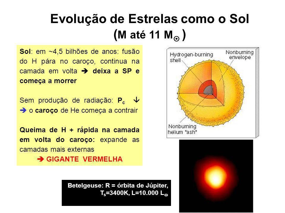 Evolução de Estrelas como o Sol ( M até 11 M ) Sol: em ~4,5 bilhões de anos: fusão do H pára no caroço, continua na camada em volta deixa a SP e começ