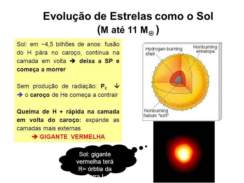 Evolução de Estrelas como o Sol ( M até 11 M ) ~ dezenas de milhões de anos depois: novo núcleo estelar foi formado: C Sol: ~100 milhões de anos depois de ter deixado SP: contração do caroço vai parar: c 10 8 kg m -3 e T c 10 8 K FUSÃO He C e O