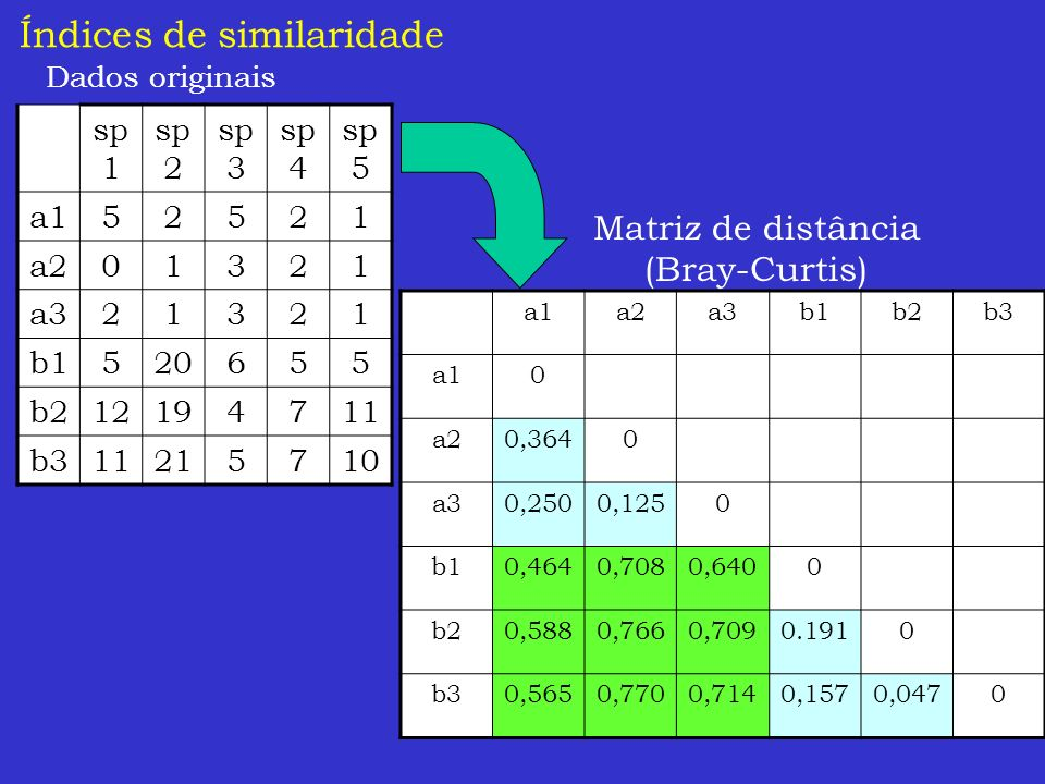 Índices de similaridade Dados originais sp 1 sp 2 sp 3 sp 4 sp 5 a152521 a201321 a321321 b1520655 b212194711 b311215710 a1a2a3b1b2b3 a10 a20,3640 a30,