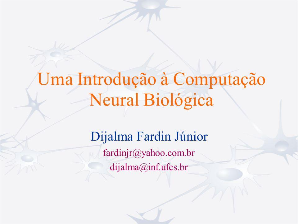 Uma Introdução à Computação Neural Biológica Dijalma Fardin Júnior fardinjr@yahoo.com.br dijalma@inf.ufes.br