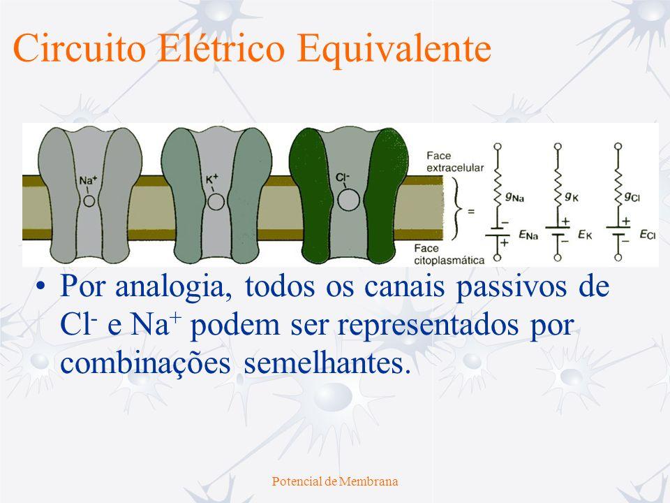 Potencial de Membrana Por analogia, todos os canais passivos de Cl - e Na + podem ser representados por combinações semelhantes. Circuito Elétrico Equ