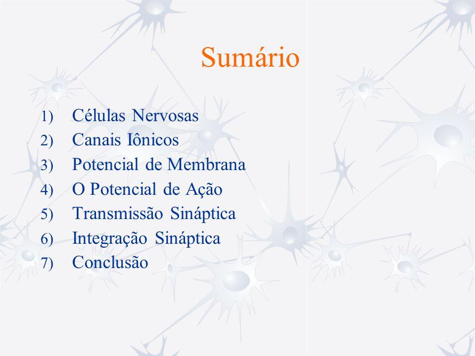 Sumário 1) Células Nervosas 2) Canais Iônicos 3) Potencial de Membrana 4) O Potencial de Ação 5) Transmissão Sináptica 6) Integração Sináptica 7) Conc