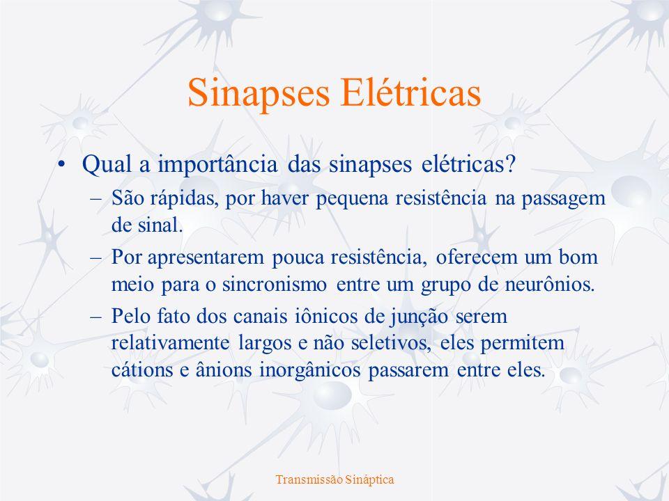 Transmissão Sináptica Sinapses Elétricas Qual a importância das sinapses elétricas? –São rápidas, por haver pequena resistência na passagem de sinal.