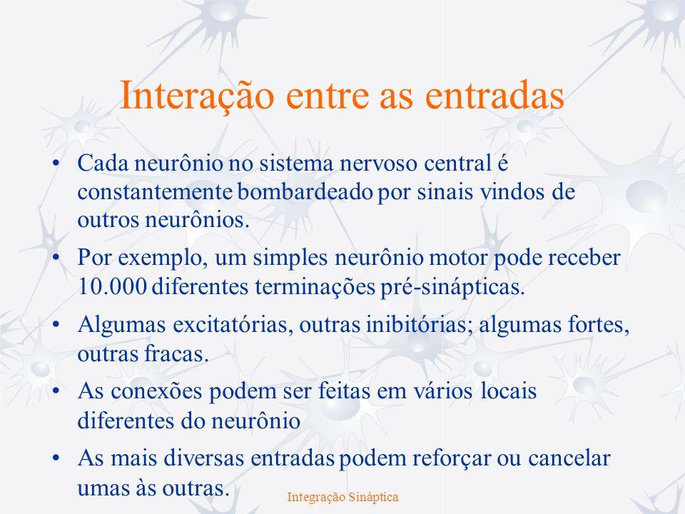 Interação entre as entradas Cada neurônio no sistema nervoso central é constantemente bombardeado por sinais vindos de outros neurônios. Por exemplo,